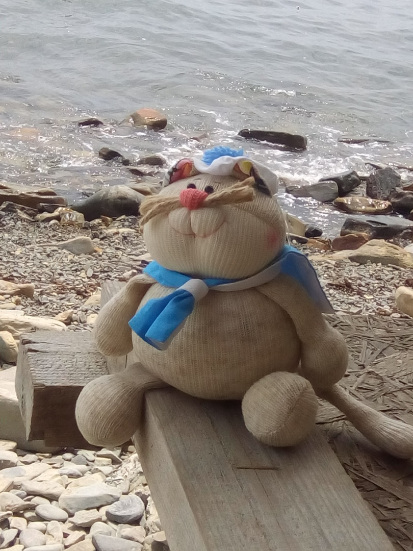 Котик морячок
