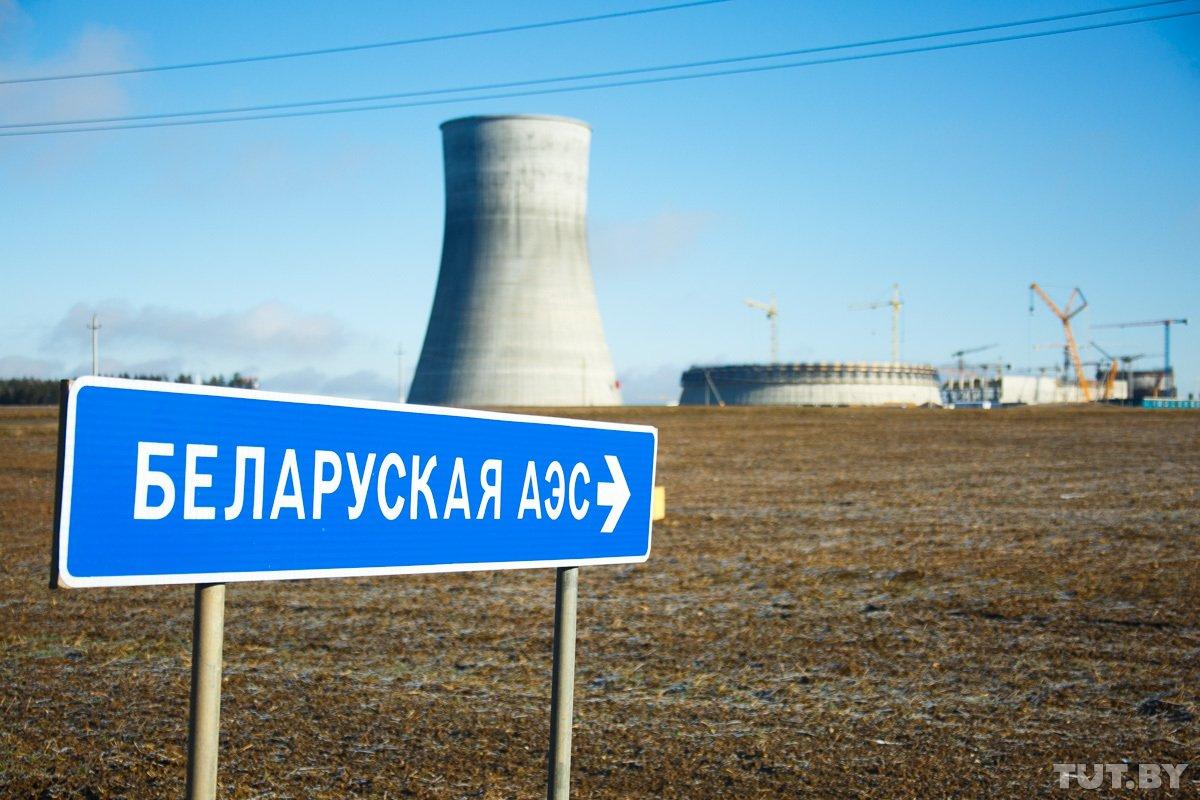 Президент Литвы: Правительство Латвии приняло решение закупать электроэнергию с БелАЭС