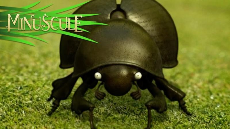 Minuscule Bouse au Carré Dung Beetle Blues season 1