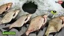 Рыболовная уловистая и очень подвижная снасть КОРОМЫСЛО