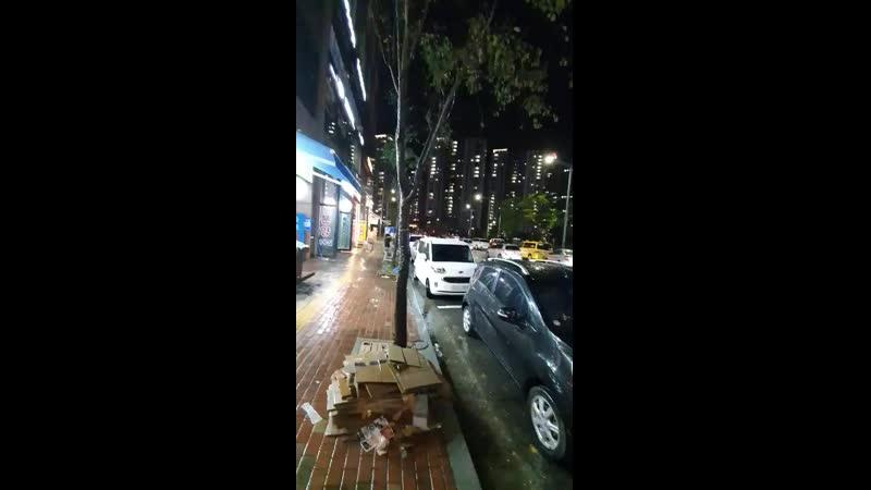 Хочу показать дождливую и,немного,озябшую Корею!☔🇰🇷