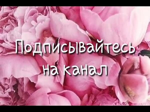 Новинка!!❤ Вот и Сама Жайна Матцаева ❤😍👍 - 1ожалла Сих Елла Виги Хьо 2019 😭❤