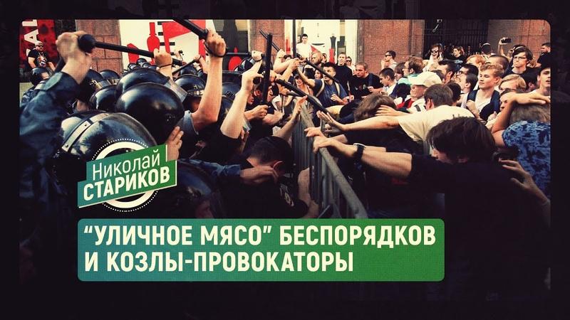 Уличное мясо беспорядков и козлы-провокаторы (Николай Стариков)