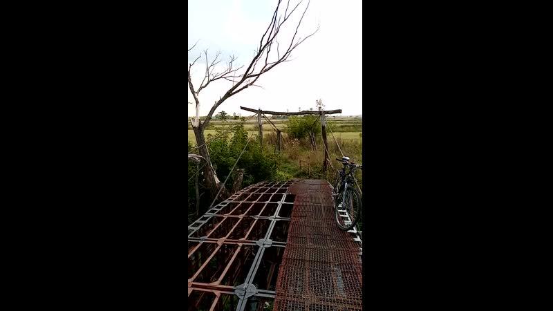 Мост через р. Тускарь в районе д. Мешково. 08.10.2019г.
