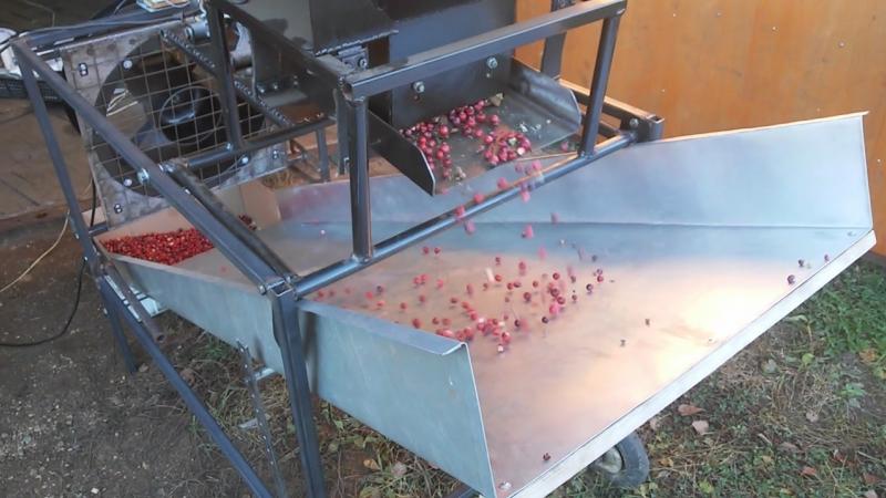 Веялка для ягод