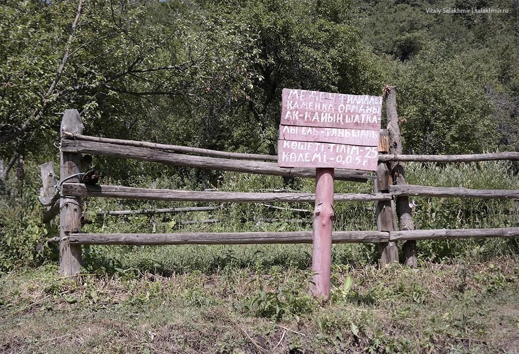 Изгородь в лесу Алматы, Иле-Алатауский парк 2019