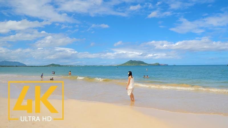4K Nature Scenic Relax Film Oahu Island Beaches Hawaii Part 1