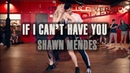 Shawn Mendes IF I CAN'T HAVE YOU l Choreography by @NikaKljun