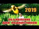 2019 год. ОБЪЯВЛЕНИЕ ДЛЯ ПОДПИСЧИКОВ.