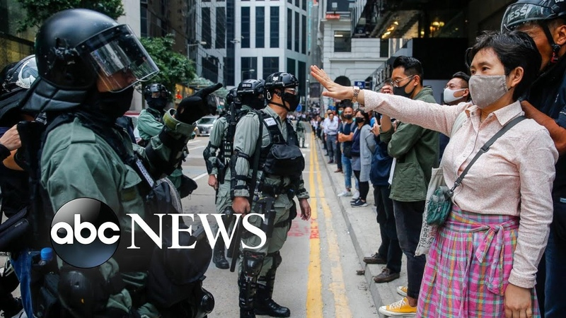 Hong Kong protests, bye-bye Bei Bei, impeachment hearing: World In Photos, Nov. 19
