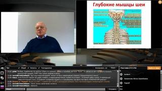 Легкая черепно-мозговая травма и ее последствия в практике невролога и интерниста, Федин А. И.