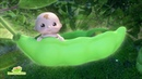 Pea Pod Babies TV Commercial