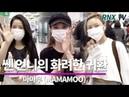190821 MAMAMOO прилетели в Корею RNX tv