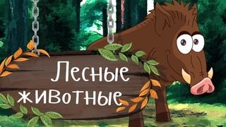 ДИКИЕ ЖИВОТНЫЕ В ЛЕСУ 🐺🦊 Учим животных - развивающие мультики для малышей про животных на русском