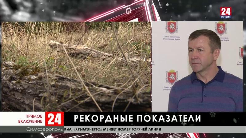 Министерство экологии Крыма перевыполнило годовой план и получило дополнительное финансирование
