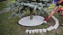[PRZYTULNY OGRÓD CZ.1] Jak zrobić mały klomb pod drzewem? jak ułożyć kostkę brukową pod drzewem?
