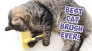 Best Cat Brush Ever Cat Slicker Brush Self Cleaning Pro Quality Grooming Comb