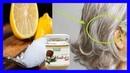 Limón y Aceite de Coco los Dos Ingredientes Para Acabar con las Canas