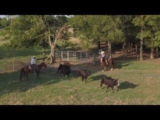 Жизнь на ранчо 310 (310 ranch)