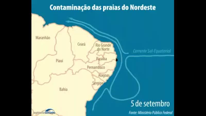 Contaminação das pras do Nordeste