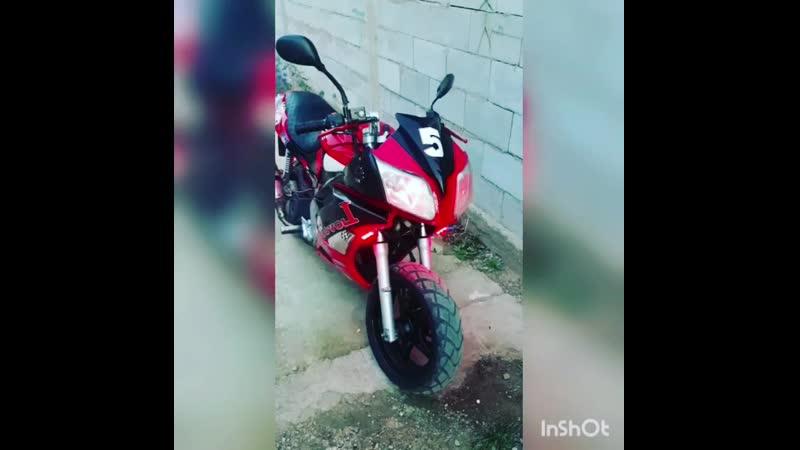 Hornet v2