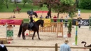 Stiltrail Working Equitation Pferd International