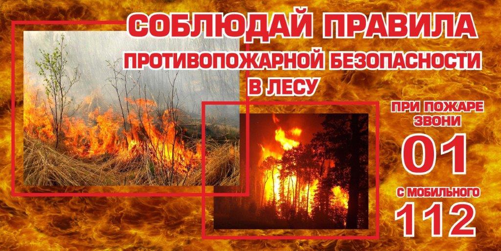 Соблюдай правила противопожарной безопасности в лесу