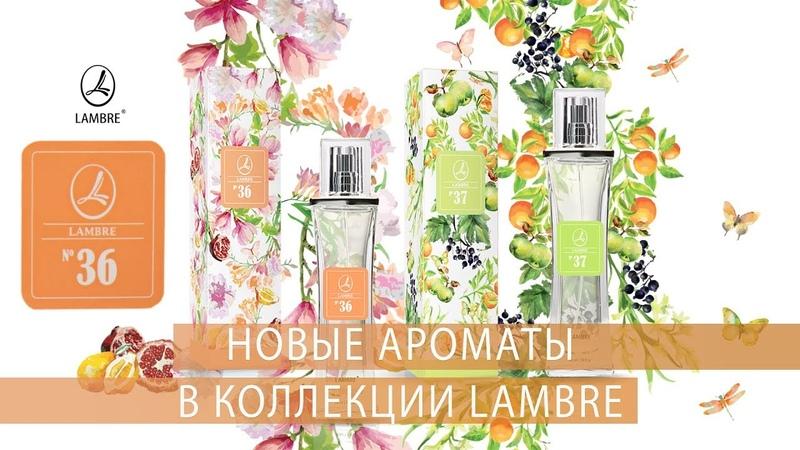 Новые ароматы в коллекции LAMBRE