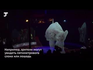 Цирк будущего в Гамбурге  с голограммами вместо животных  Circus-Theater Roncalli