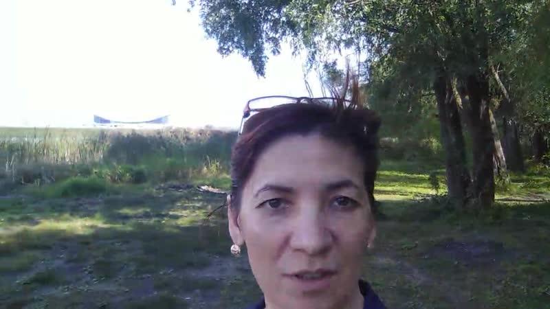 Мои ольфакторные ощущения от прогулки по лесу Казань август 2019