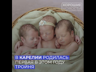 В Карелии родилась первая в этом году тройня