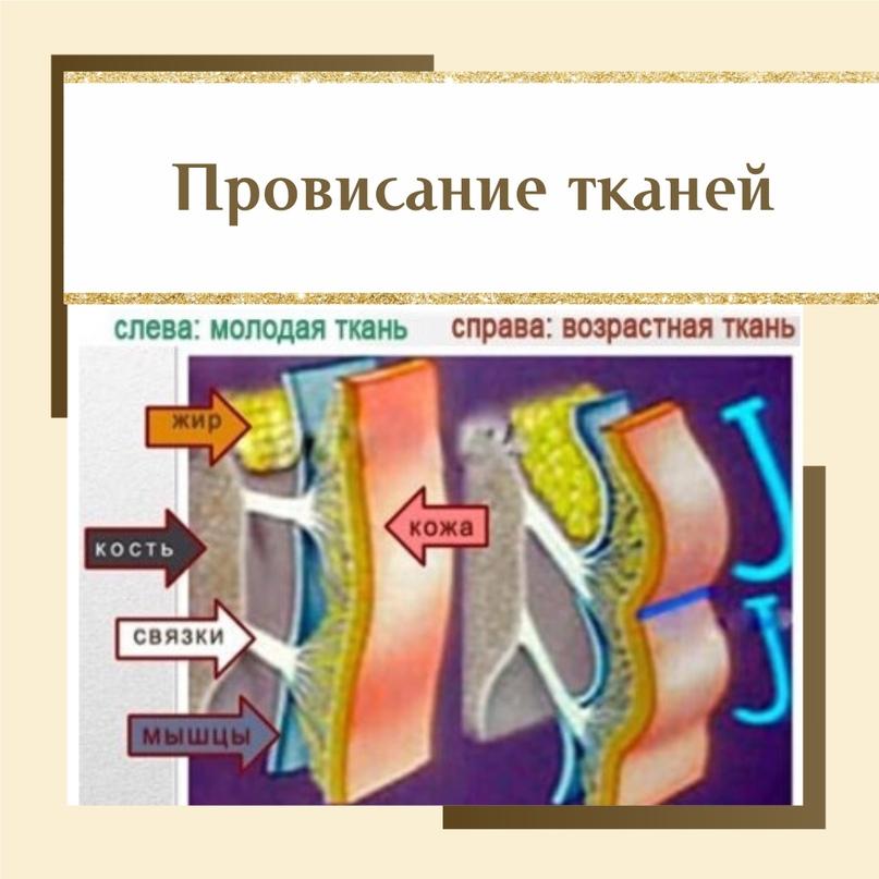 Процедуры, которые не стоит пропускать., изображение №1