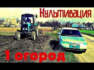 Трактор Беларус Культивация Снимает плуг Огород 2020 #vseklevo #синийтрактор Культиватор Cultivation