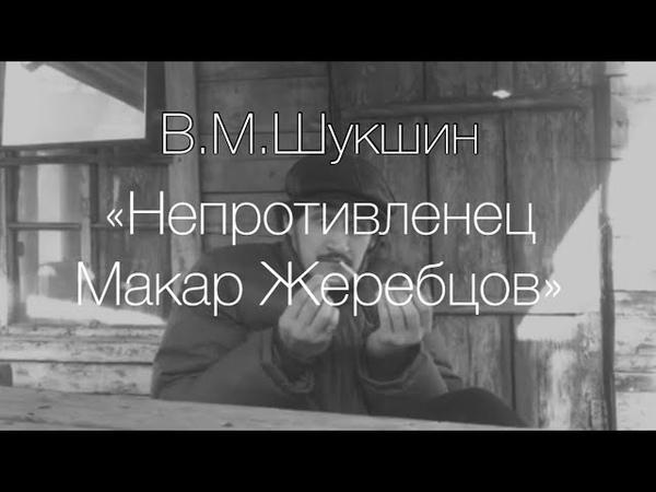 Непротивленец Макар Жеребцов В Шукшин