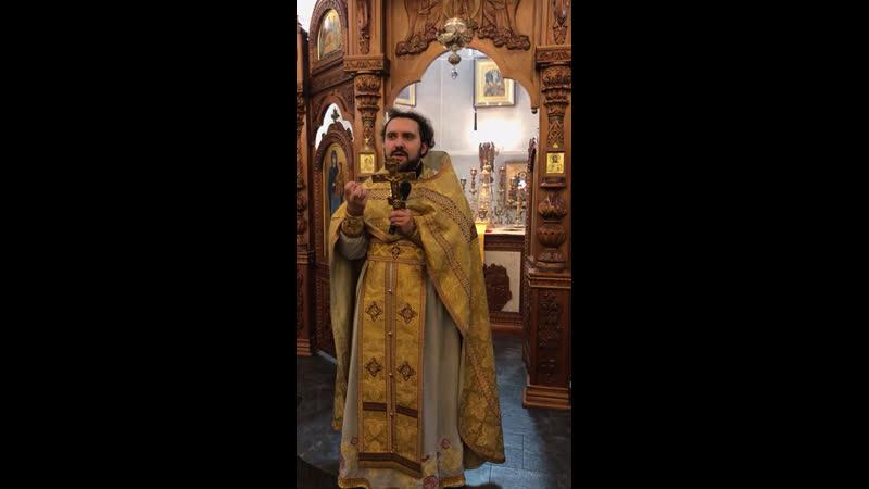 О несчастной вдове. Проповедь протоиерея Иоанна Задорожина в неделю 18 по Пятидесятнице.