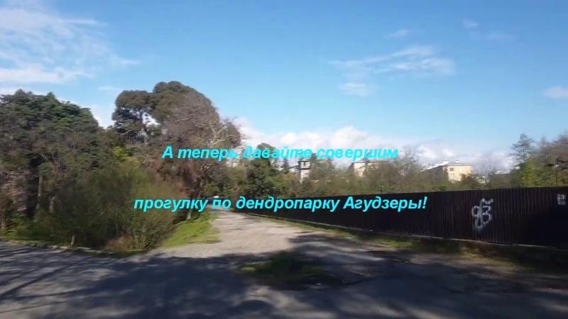 Агудзера дендропарк 2020