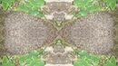 Иллюзия обмана 4. Illusion of deception 4