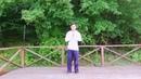 Цигун, урок 2: «Непрерывный столб», база стиля «Синь-И Ба», раздел «яншенгун» питания жизненности