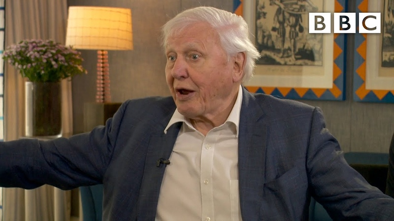 David Attenborough: This is the last chance to address climate change BBC