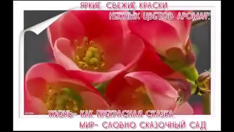 VIDEO 2019 09 18 07 04