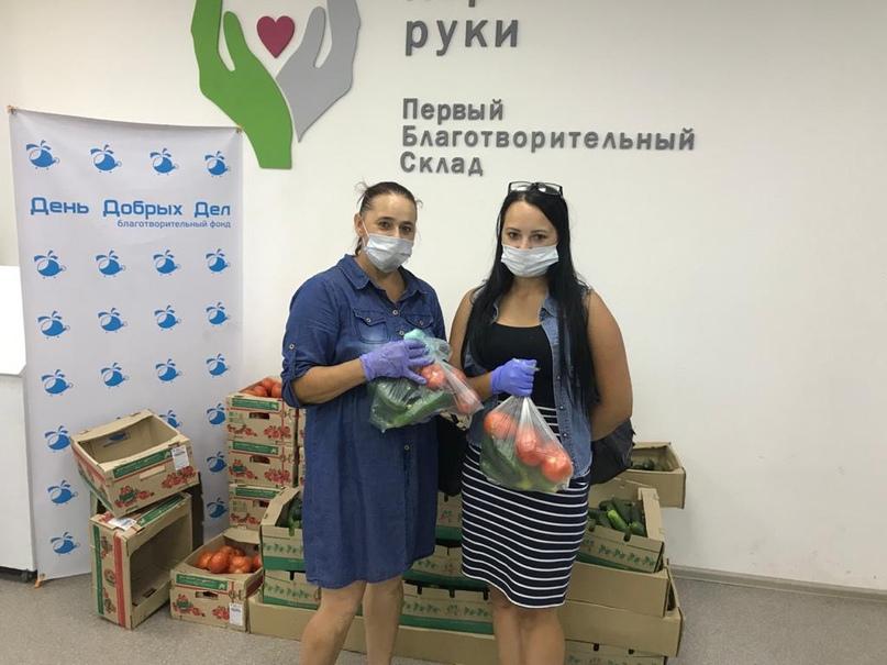 Тепличный комбинат «Майский» передал 2 тонны овощей для подопечных фонда «День добрых дел», изображение №1