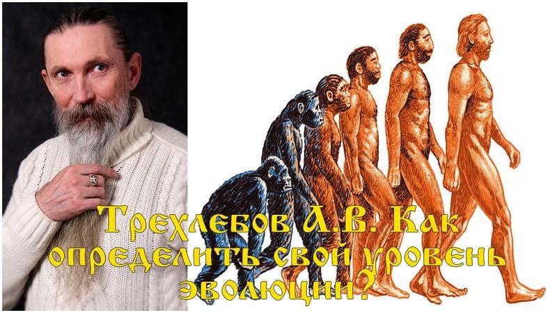 Трехлебов А В Как определить свой эволюционный уровень Смерд Веси Витязь и Ведун