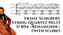 Franz Schubert String Quartet No 13 D 804 Rosamunde with score