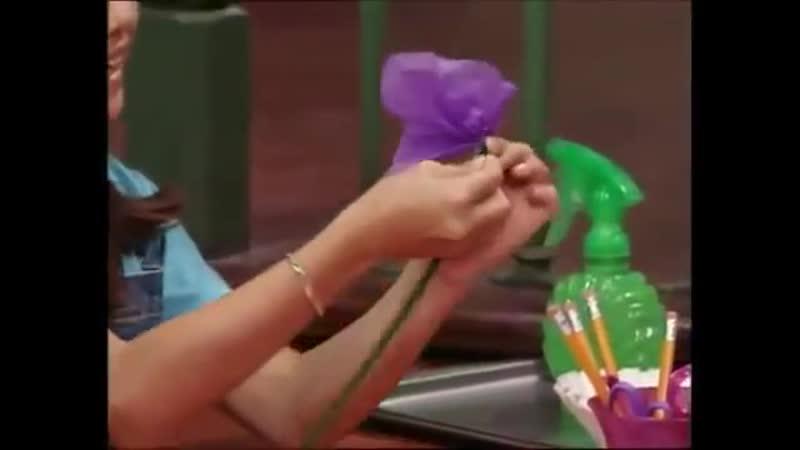 Barney Friends: A Perfectly Purple Day (Season 8, Episode 7)