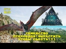 BEASTS OF BERMUDA СЕМЕЙСТВО ПТЕРОЕДОВ