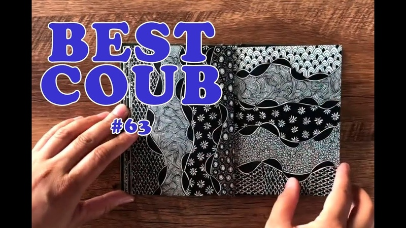 Best Coub 63 Прикольные видяшки за неделю