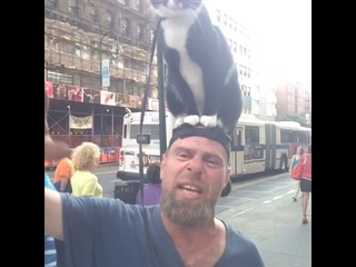 Man screams while cat is on head. Why is he doing this?