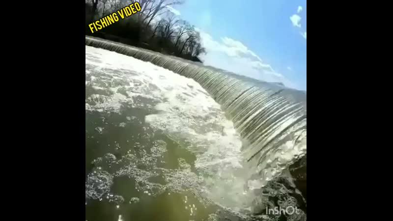 ЩУКА против течения