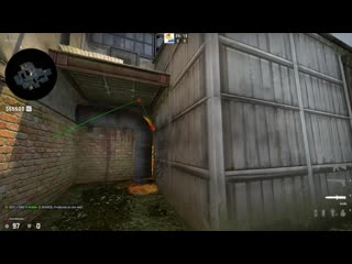 molly on cache