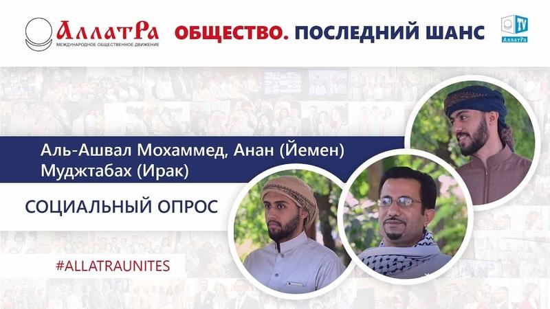 Аль Ашвал Мохаммед Анан Муджтабах Йемен Ирак Социальный опрос про созидательное общество